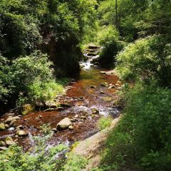 六盤山國家森林公園用戶圖片