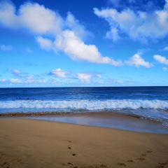 Makapu'u Beach User Photo