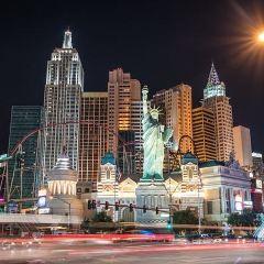 紐約紐約過山車用戶圖片