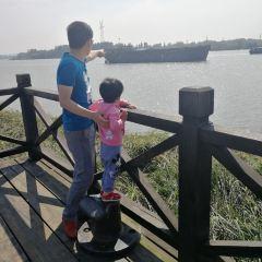 濱江濕地公園用戶圖片