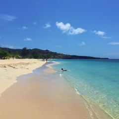 Grand Anse Beach User Photo