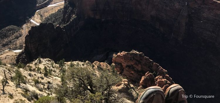 Zion Observation Point1