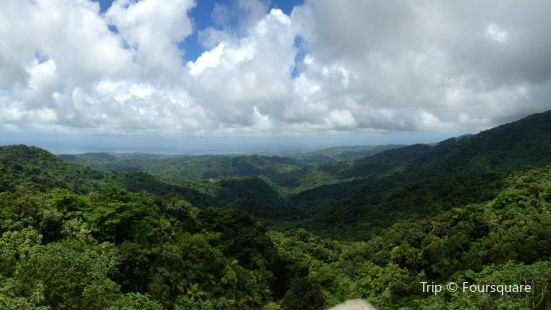 The El Yunque National Forest