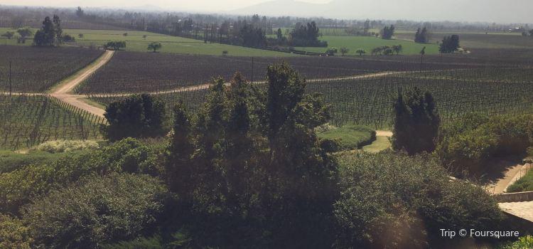 Vina Haras de Pirque1