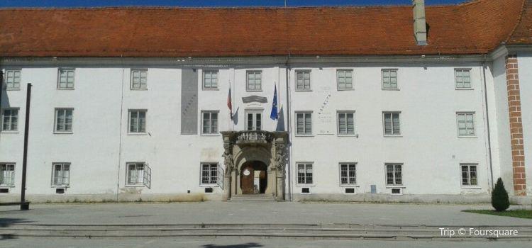 City Municipality of Murska Sobota