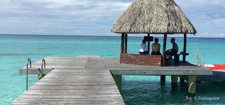 Tuamotus Islands