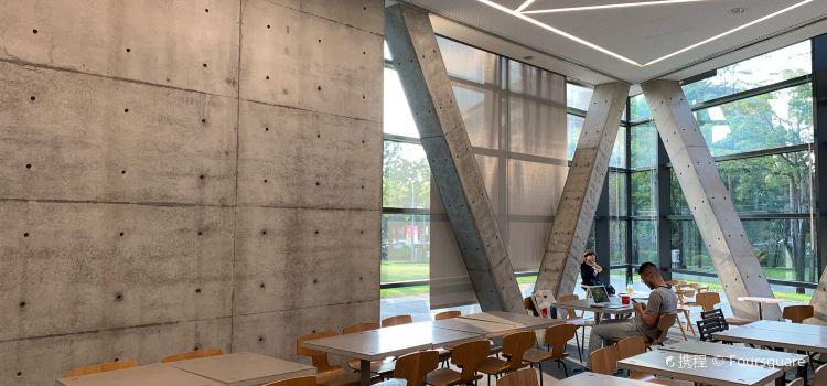 Asian Museum Of Modern Art