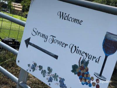 Strong Tower Vineyard