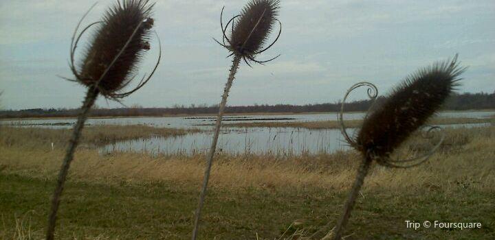 Iroquois National Wildlife Refuge2