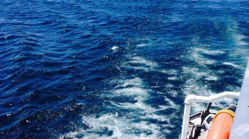 金斯頓千島群島遊輪