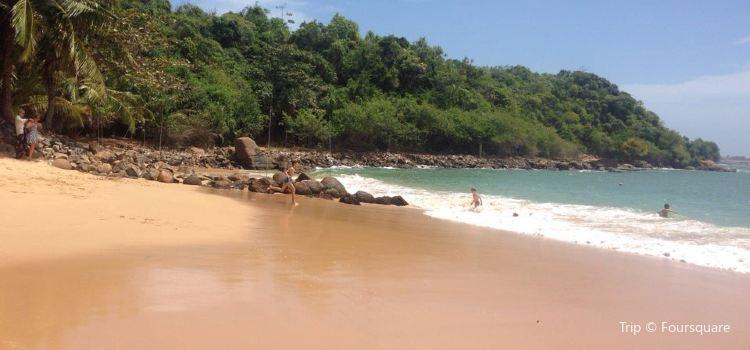 叢林海灘3