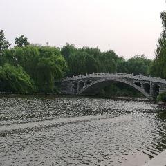 다밍후 관광지(대명호 관광지) 여행 사진