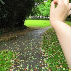 南濱公園用戶圖片