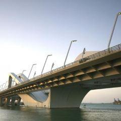 謝赫紮耶德大橋用戶圖片