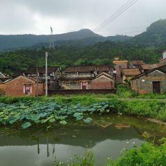 Lingyun Mountain User Photo