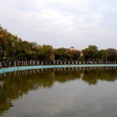 Kugulu Park User Photo