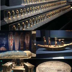 古埃及神秘寶藏大展用戶圖片