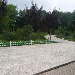 東郊公園用戶圖片