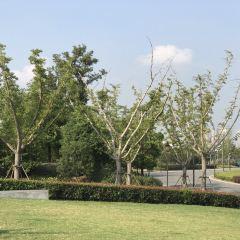 Shuixia Gucheng Wenhua Keji Theme Amusement Park User Photo