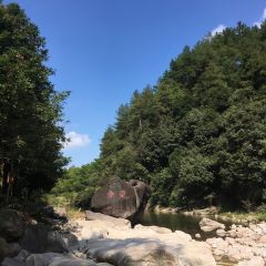 Hibiscus Valley User Photo