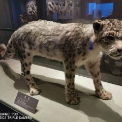 青海藏文化博物院用戶圖片