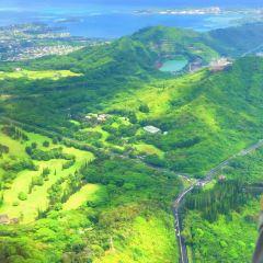 藍色夏威夷直升飛機用戶圖片