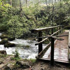 Bluntautal Valley User Photo