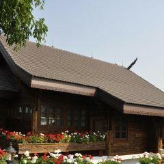 Mae Fah Luang Art & Cultural Park User Photo