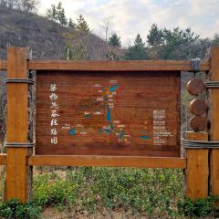 Wuji Ghost Valley Scenic Area User Photo