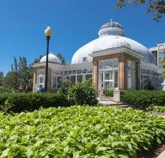 Allan Gardens Conservatory User Photo