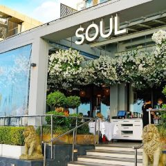 Soul Bar & Bistro User Photo