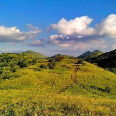 正陽草原用戶圖片