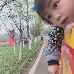 Dianjiang Mudan Yinghua World User Photo