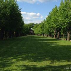 Berggarten User Photo