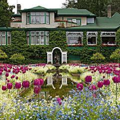 水晶花園用戶圖片