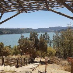 Reserva Nacional Laguna Torca User Photo