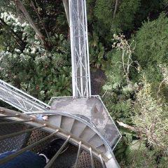 Treetop Adventure Park User Photo