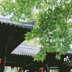 People's Park User Photo