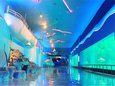 Quancheng Ocean and Polar World