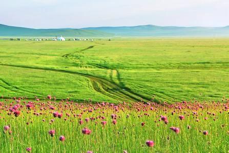 白音烏拉草原