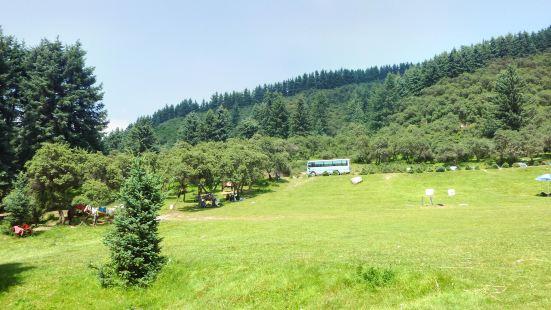鷂子溝國家森林公園