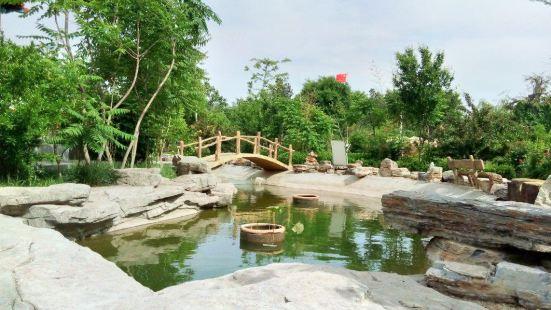 Xianxian Han Tomb Group