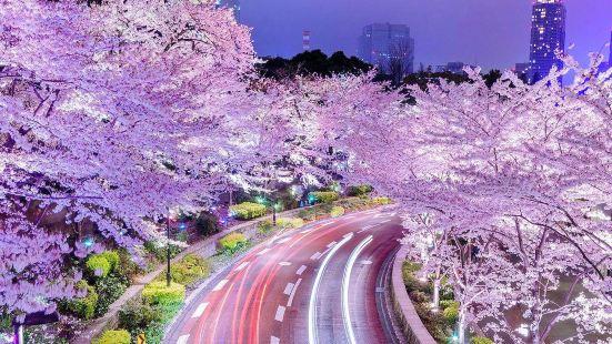 도쿄 미드타운