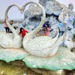 Dongming Yellow River National Wetland Park Zoo User Photo