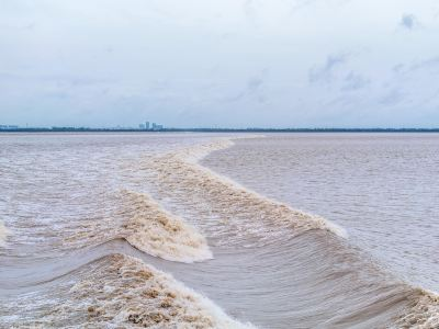 Haining Tide