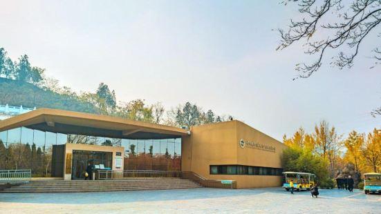 黃河國家地質博物館