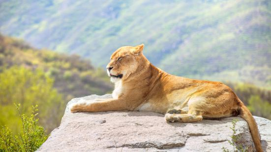 Badaling Wildlife World