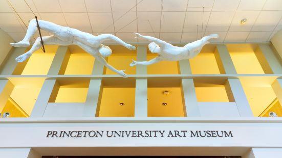 普林斯頓大學藝術博物館