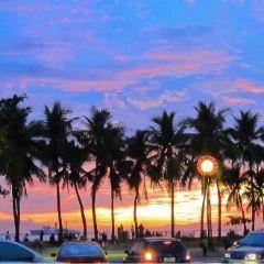 Roxas Boulevard User Photo