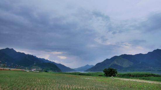 Lingyangxia Guzhandao Forest Park